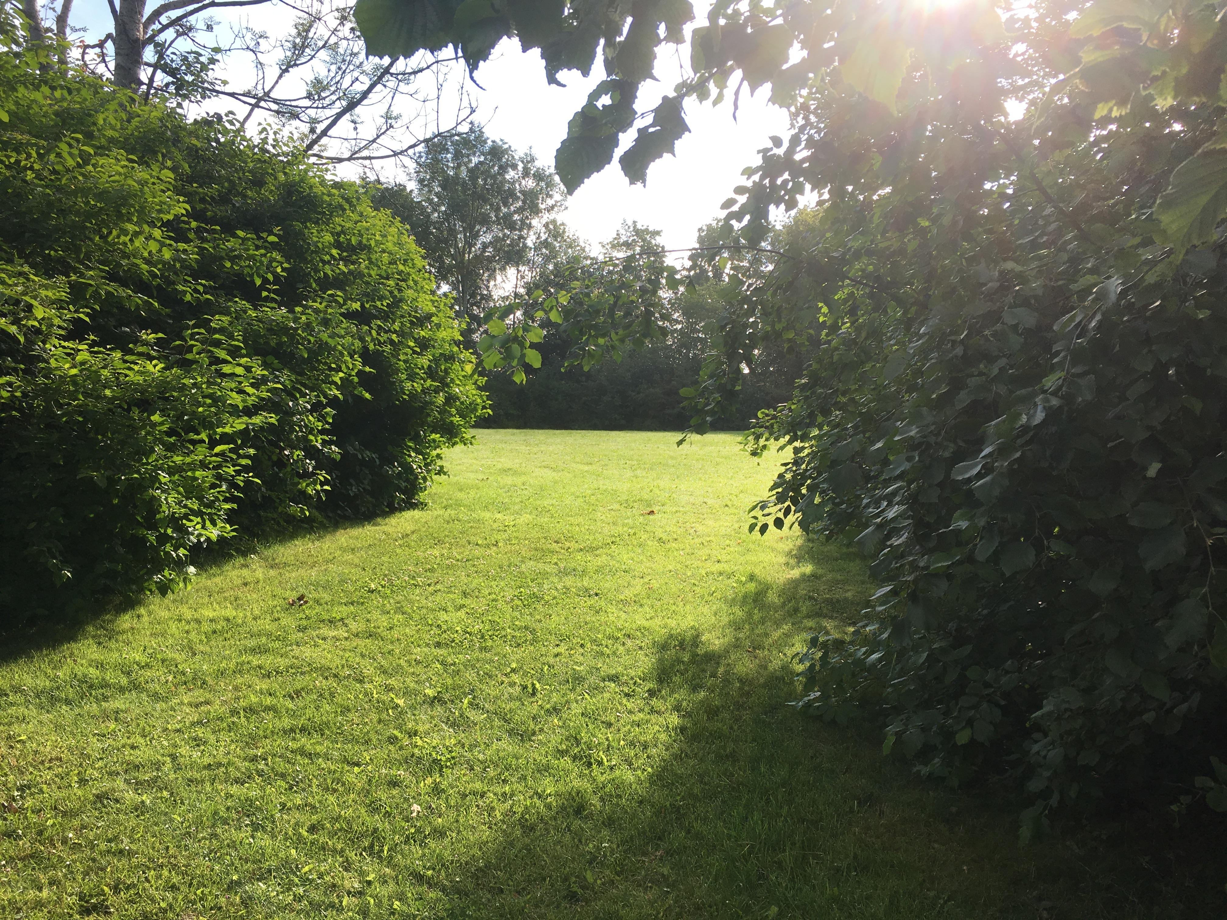 Granne med bostadsrättsföreningen ligger denna oas